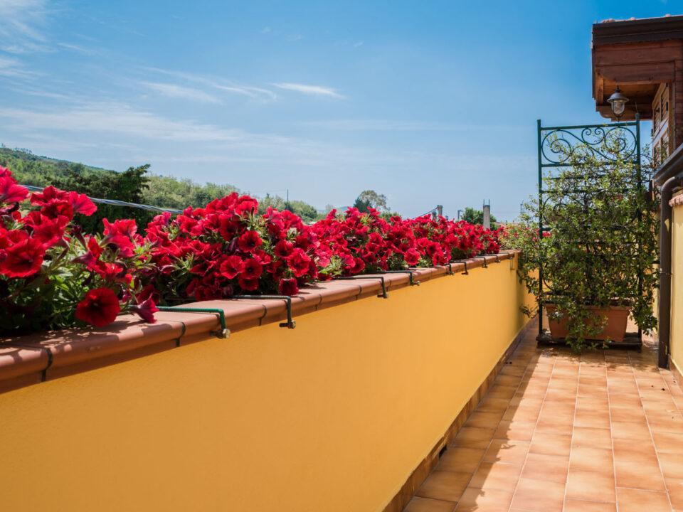 B&B e Casa Vacanze Il Girasole8 - cilentohome.com