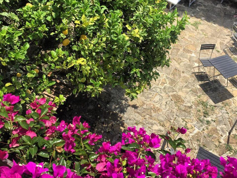 Residenza D'epoca Tamara8_cilentohome.com