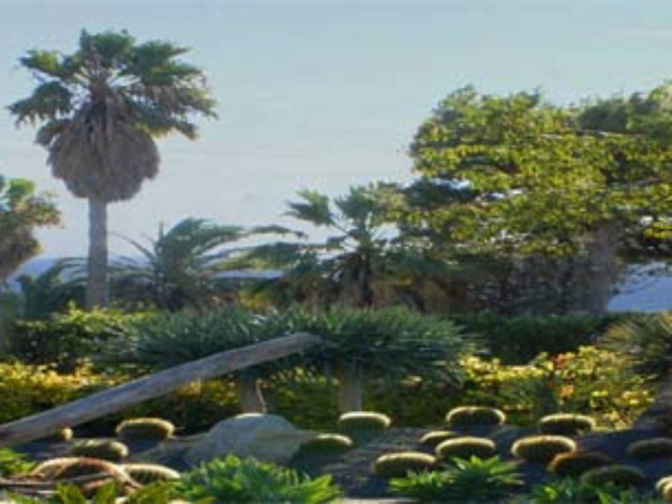 Giardini Ravino, Parco Botanico Tropical Mediterraneo