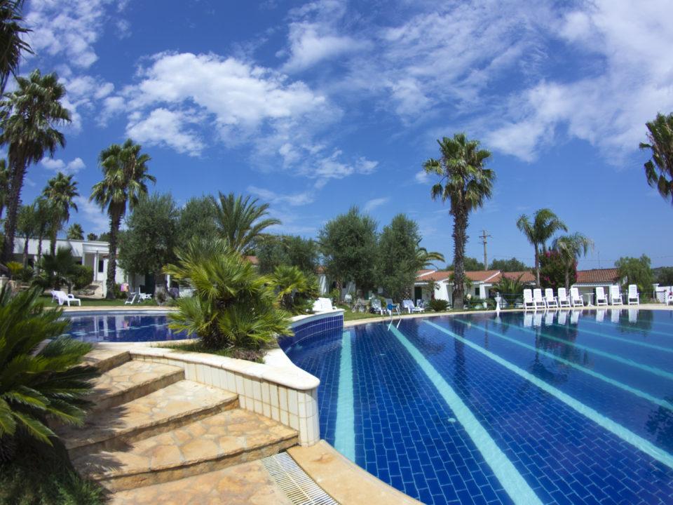 piscina _ giardino
